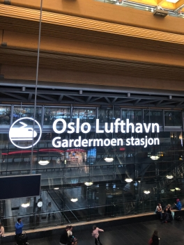Layover in Oslo