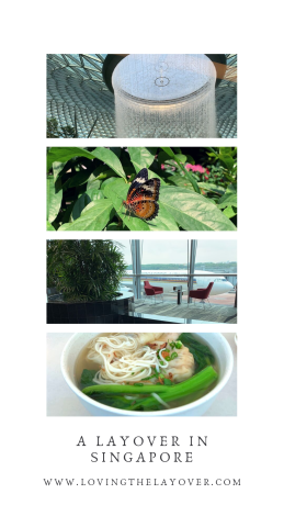 A LAYOVER IN SINGAPORE